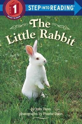 Little Rabbit by Judy Dunn