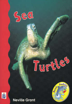 Sea Turtles by Neville Grant