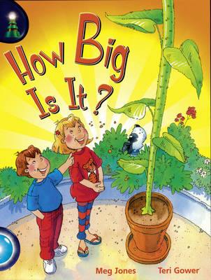 Lighthouse Yr2/P3 Turquoise: How Big is it (6 Pack) by Meg Jones, Jean Kendall