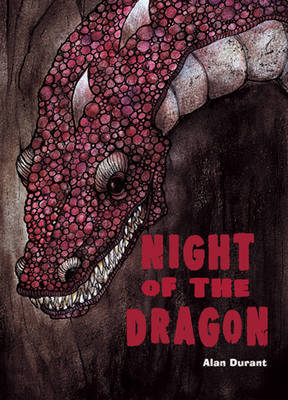 Pocket Chillers Year 4 Horror Fiction: Book 2 - the Night of the Dragon by