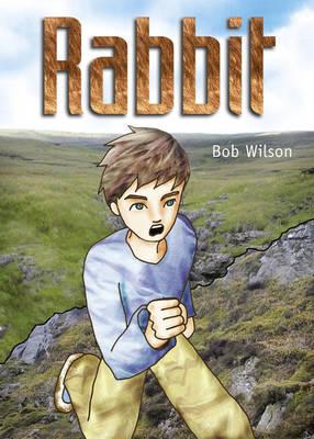 Pocket Tales Year 6 Rabbit by Bob Wilson