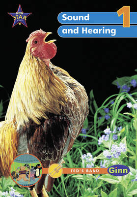 New Science Yr1/P2: Sound & Hearing Big Book by