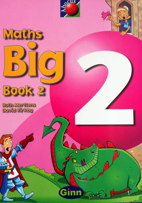 Abacus Year 2 / P3: Big Book 2 by
