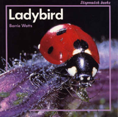 Ladybird by Barrie Watts