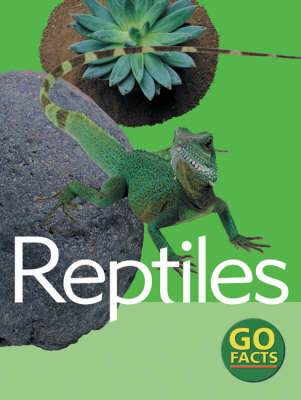 Reptiles by Katy Pike, Paul McEvoy