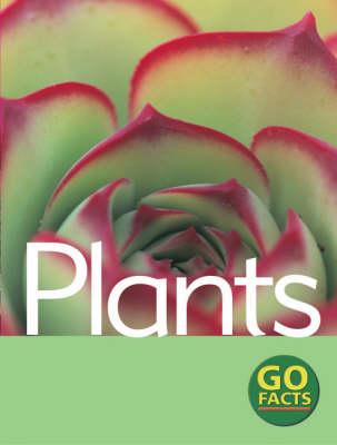 Plants by Paul McEvoy