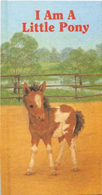I am a Little Pony by Amrei Fechner