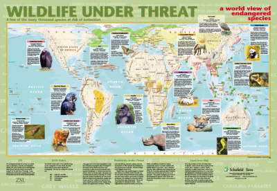 Wildlife Under Threat by