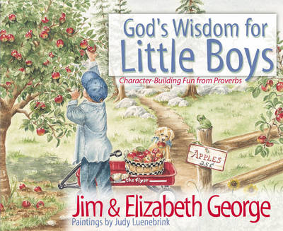 God's Wisdom for Little Boys Character-building Fun from Proverbs by Jim George, Elizabeth George