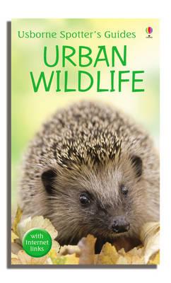 Urban Wildlife by Diana Shipp