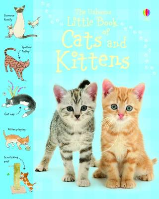 Little Book of Cats and Kittens by Sarah Khan, Simon Tudhope