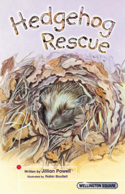 Wellington Square Think About it Hedgehog Rescue by Jillian Powell