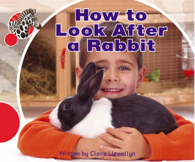 Spotty Zebra Red Ourselves - How to Look After a Rabbit (x6) by Claire Llewellyn