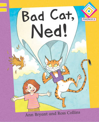 Bad Cat, Ned! by Ann Bryant