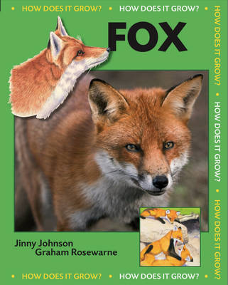 Fox by Jinny Johnson