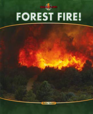Forest Fire by Anita Ganeri