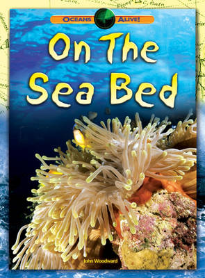 On the Sea Bed by John Woodward