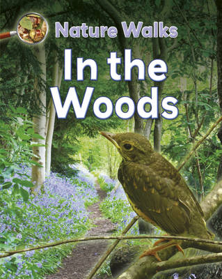 In the Woods by Clare Collinson