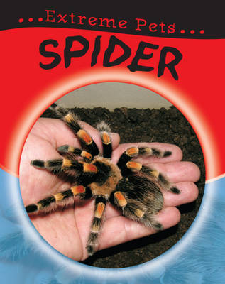 Spider by Selina Wood