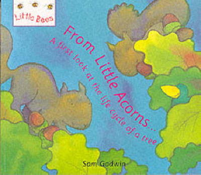 From Little Acorns A First Look at the Life Cycle of a Tree by Sam Godwin