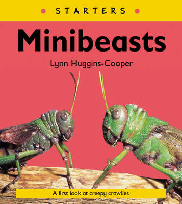 Read Write Inc. Comprehension: Module 24: Children's Book: Mini Beasts by Lynn Huggins-Cooper, Ruth Miskin