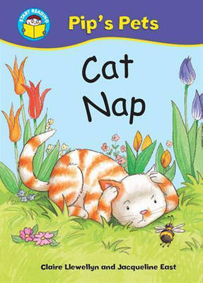 Cat Nap by Claire Llewellyn