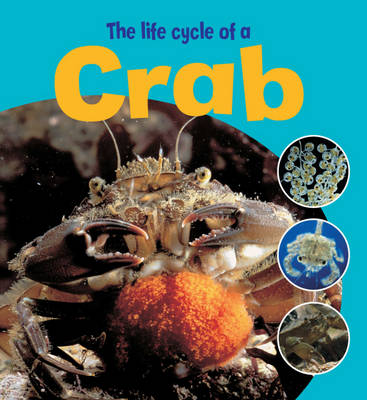 The Life Cycle of a Crab by Ruth Thomson