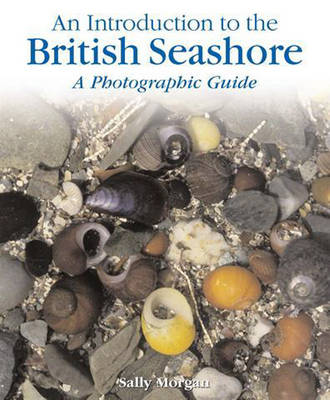 The British Seashore A Photographic Guide by Sally Morgan