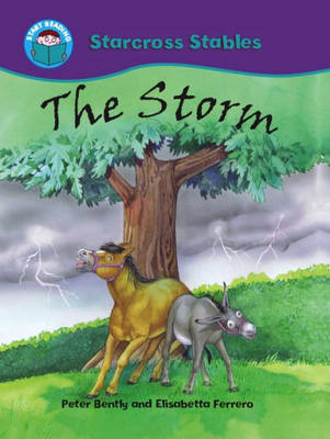 The Storm by Peter Bently