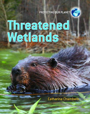 Threatened Wetlands by Catherine Chambers