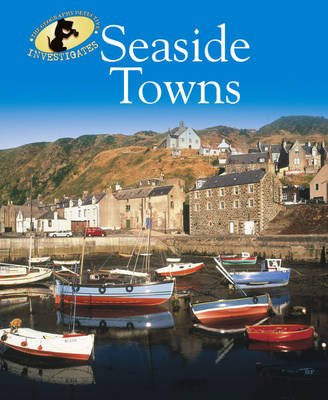 Seaside Towns by Nicola Barber