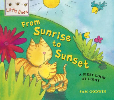 From Sunrise to Sunset A First Look at Light by Sam Godwin