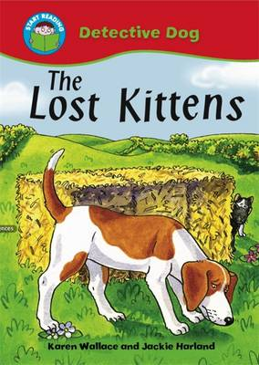 The Lost Kittens by Karen Wallace