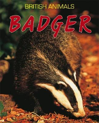 Badger by Michael Leach