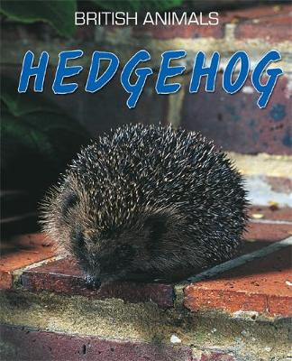 Hedgehog by Michael Leach