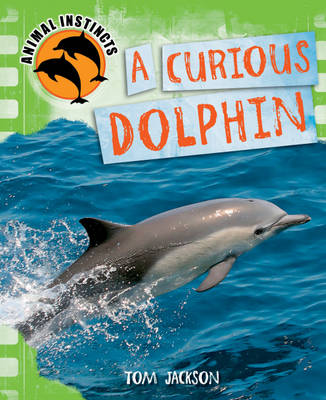 Curious Dolphin by Tom Jackson