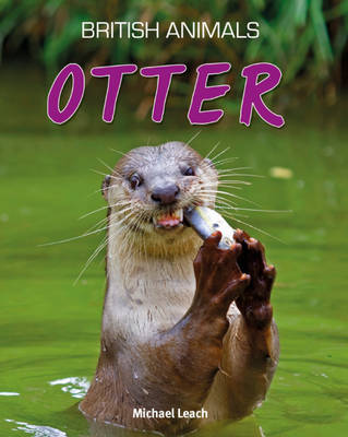 Otter by Michael Leach