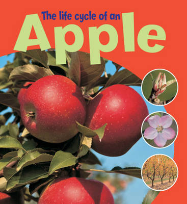 The Life Cycle of an Apple by Ruth Thomson
