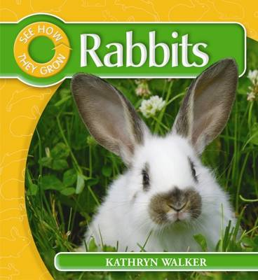 Rabbit by Kathryn Walker