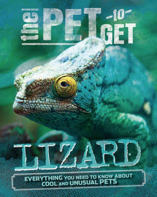 Lizard by Rob Colson