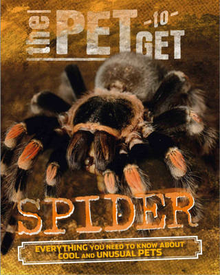 Spider by Rob Colson