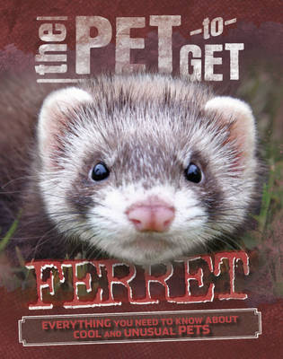 Ferret by Rob Colson