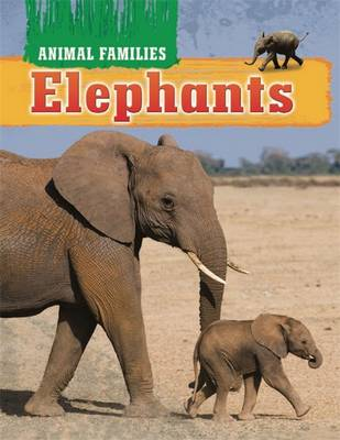 Elephants by Hachette Children's Books, Tim Harris