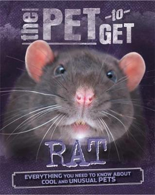 Rat by Rob Colson