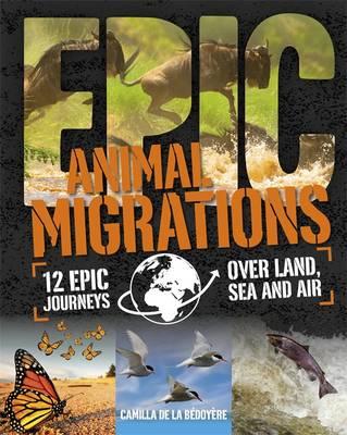 Animal Migrations by Camilla De la Bedoyere