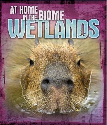 Wetlands by Louise Spilsbury, Richard Spilsbury