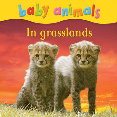 Baby Animals: In Grasslands by Kingfisher