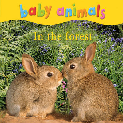 Baby Animals: In the Forest by Kingfisher