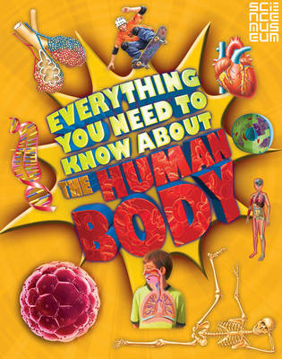 Everything You Need To Know About The Human Body by Patricia Macnair