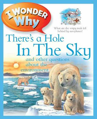 I Wonder Why There's a Hole in the Sky by Jackie Gaff
